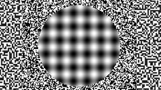 Moving Illusions