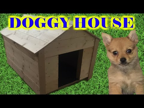 Building my Chihuahua a small dog house! Timelapse dog house build.