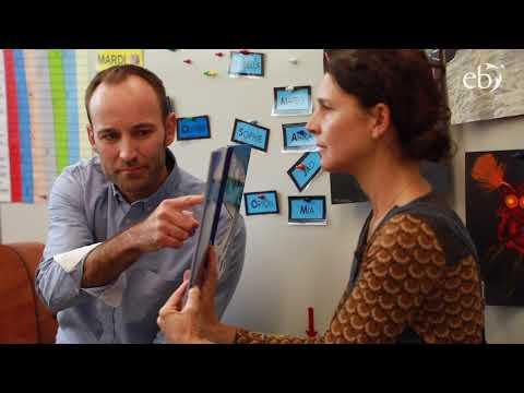 Co-teaching in Preschool