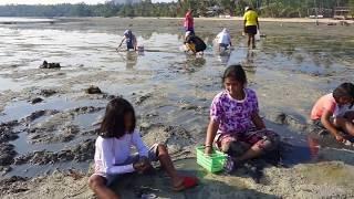 Efsane Ko Phangan Adası Yol Günlükleri, Tayland