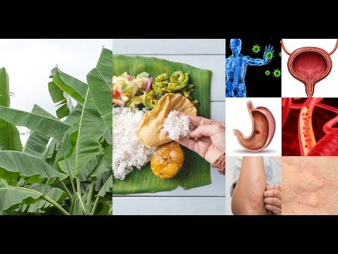 Health Benefits of Eating on a Banana Leaf , It Will Surprise you