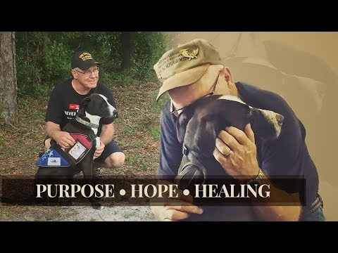 Veterans with PTSD Finding Purpose, Hope, and Healing with Service Dogs