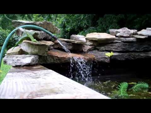 How to fight algae: Doing water changes on the garden pond