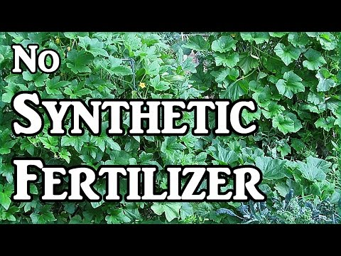 Why We Don't Use Synthetic Fertilizers