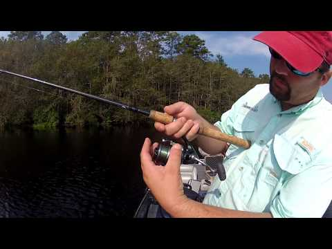 Fishing for Beginners - How to Cast a Spinning Reel