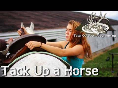 How to saddle and tack up a horse - Horse care tips with Chey #4