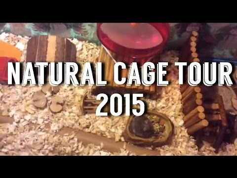 Natural Cage Tour 2015