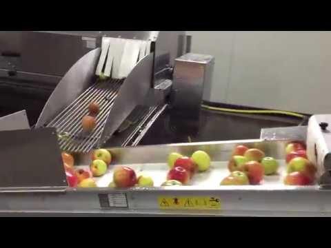 Sraml apple washer JP6000