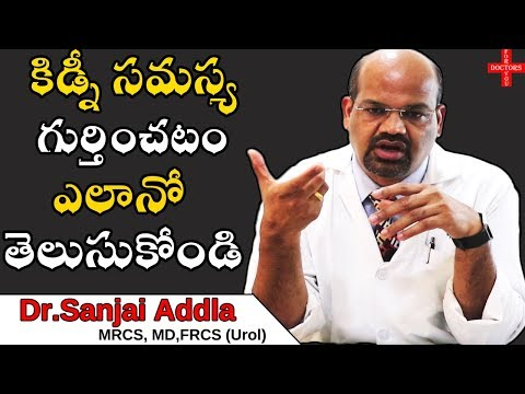 Kidney Disease Symptoms and Treatment Options and Health Tips in Telugu | Doctors For You