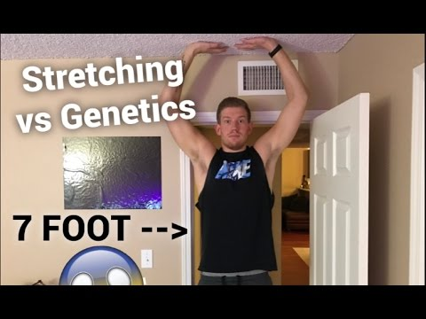 DOES STRETCHING MAKE YOU TALLER? -My 7 Foot Life-