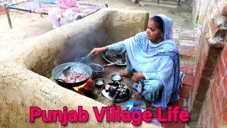Punjabi Village woman Cooking Food On WoodFire❤️ Village Life of Punjab/India♥️ Rural life of Punjab