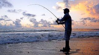 Fishing For Mullet Run Predators From Shore And Battling Seaweed