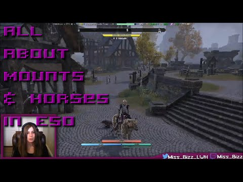 All About Mounts & Horses in ESO [New guide link in description]