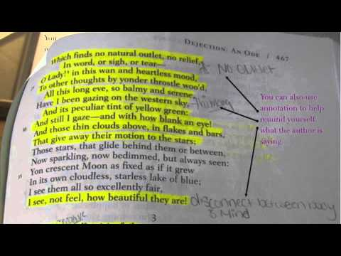 How to Annotate A Text