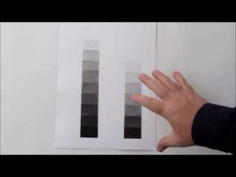 Free Drawing Class: Value Scale:Learn to Identify Value