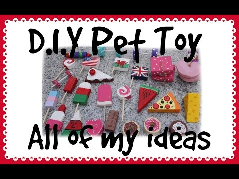 D.I.Y Guinea Pig Toys & Houses