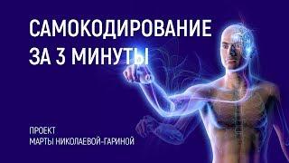 Download Сеанс САМОКОДИРОВАНИЕ ЗА 3 МИНУТЫ   Марта Николаева-Гарина Video