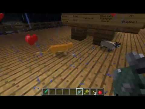 Minecraft Kitten breeding from Cats. Wild Ocelots