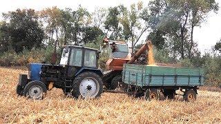Нива СК-5 на уборке кукурузы: Солонянська, Чемеровецька.  #СельхозТехника ТВ