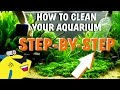 Planted Tank Water Changegravelsubstrate Cleaning - How To Clean Your Aquarium mp3