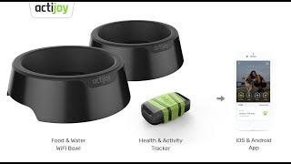 Actijoy connected devices for dogs