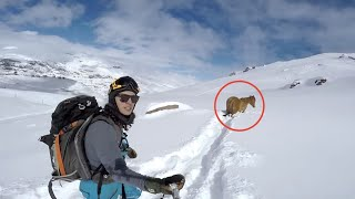 As They Sped Down A Mountain Something Strange Caught Their Eye. What Happened Next? Astonishing