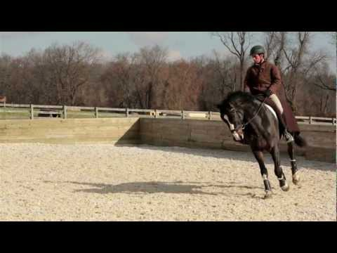 Engaging the Hind End