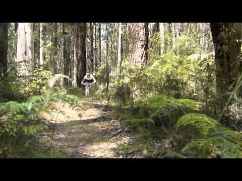Mountain Bike Skills - Forrest Junior Camp