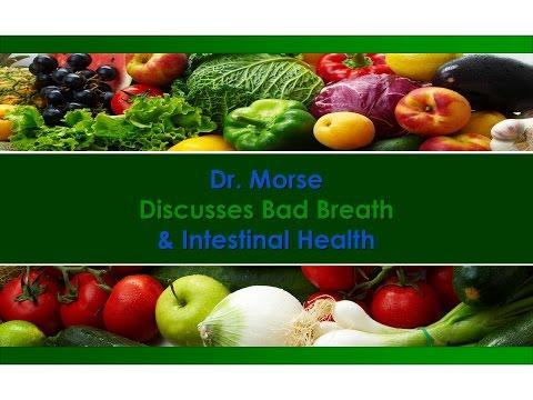 Dr. Morse Discusses Bad Breath & Intestinal Health