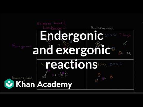 Endergonic, exergonic, exothermic, and endothermic reactions   Khan Academy