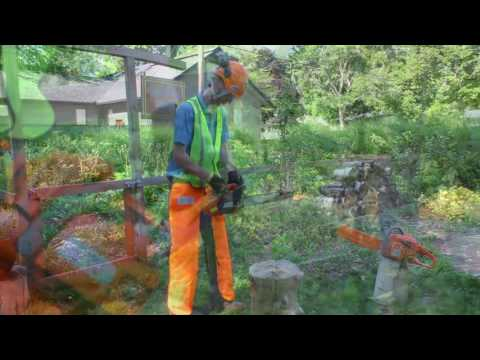Best Practices - Chainsaw Safety Features