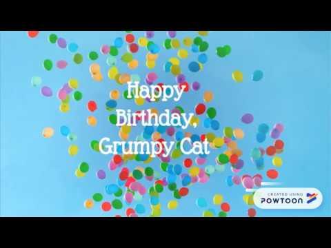 Grumpy Cat's Birdthay, a Contribute to Grumpy Cat