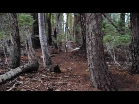 2014 Downieville Downhill (not a GO PRO edit)