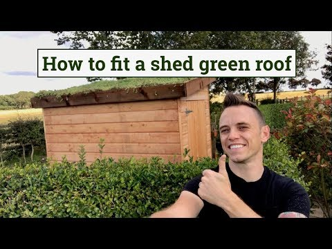 How to fit a green roof to a garden shed