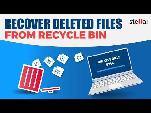 How to Recover Files Permanently Deleted from the Recycle Bin?