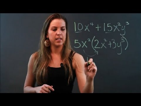 How to Factor Common Terms From Binomials : Algebra Help