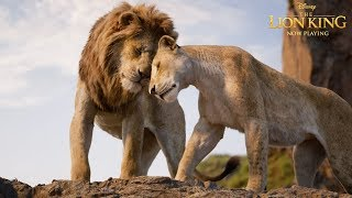 The Lion King | In Theatres Now