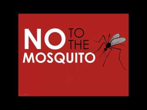 Rain Barrels and Mosquitoes