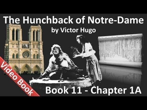 Book 11 - Chapter 1A - The Hunchback of Notre Dame by Victor Hugo - The Little Shoe