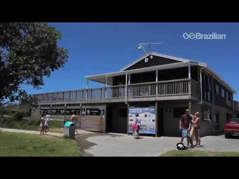 Destinos de Verão - Omaha Beach, Nova Zelândia - GO Brazilian