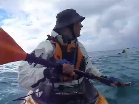 Byron Bay sea kayak surfing