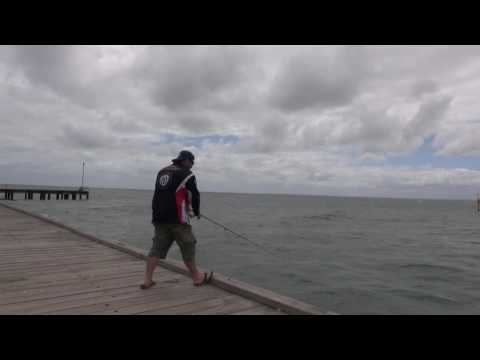 Oz Fish TV - Frankston Pier and Westernport Gummies