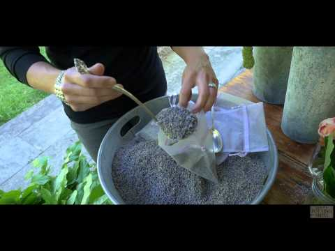 School of Flowers - Lavender Confetti
