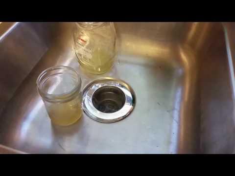 Gnat infestation: Apple Cider Vinegar does NOT work