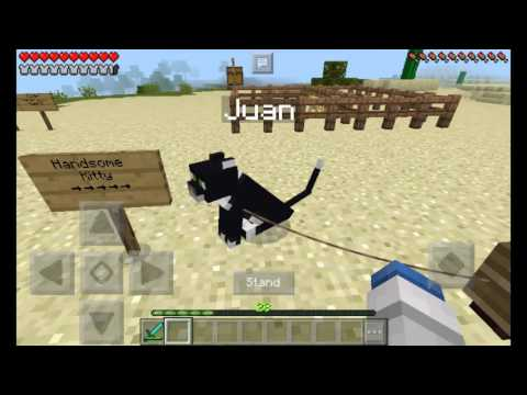 How to Tame and Breed Ocelots in minecraft PE!!