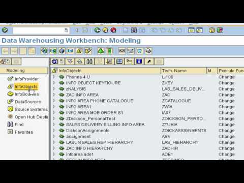 06 - SAP BI Training - InfoObjects