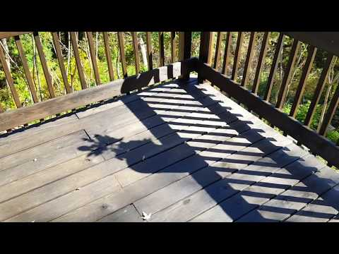 PPG Timeless Oxford Brown Penetrating Stain Deck test