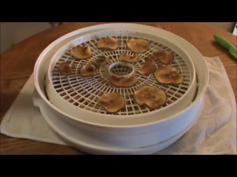 DEHYDRATING APPLES TO MAKE CINNAMON APPLE CHIPS