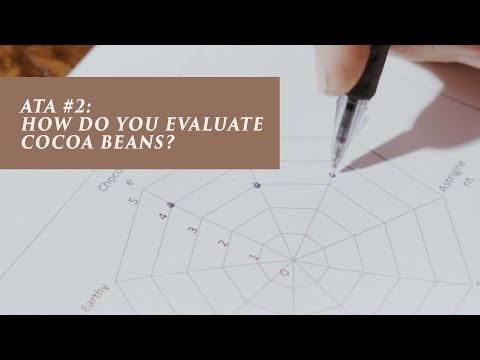 ATA #2 - How do you evaluate cocoa beans?
