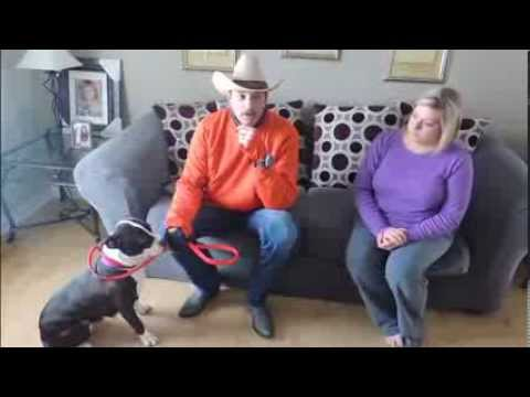 Dog Talk - 3 Things You Should Know About Dogs - DOG INTERVENTION - Dog Whisperer BIG CHUCK MCBRIDE